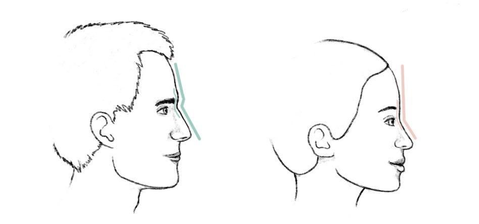 2passclinic-browbone-comparison-men-versus-women