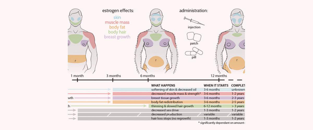 Die 6 wichtigsten körperlichen Veränderungen durch die MtF-Hormontherapie